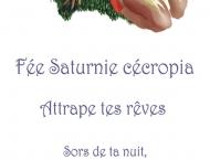 À Vendre- Signet de fée Saturnie Cécropia, Photoshop 2 x 7 pouces